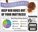 Bed Bugs Edmonton Registry pictures