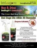 How To Eradicate Bed Bugs Effectively photos