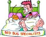 photos of Bed Bugs History
