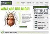 images of Bed Bugs Workplace