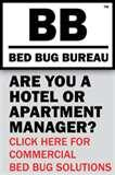 Bed Bugs Eczema