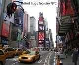 photos of Bedbugs Registry Com Nyc
