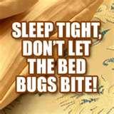 Bed Bugs Cedar Wood