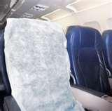 pictures of Bed Bugs On Airplanes