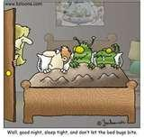 Bed Bugs Cream pictures