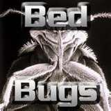 Bed Bugs Ipod images