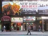 images of Bed Bugs Of New York News