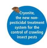 Cryonite Bed Bugs pictures