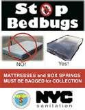 images of New York City Bed Bugs