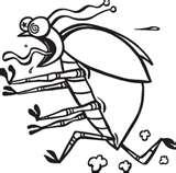 images of Get Rid Of Bed Bug