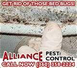 Exterminators Bed Bugs images