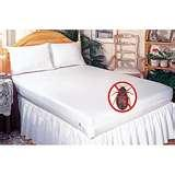 Mattress Covers Bed Bugs images