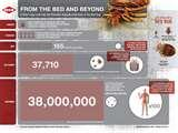 Bed Bugs Info images