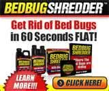 How To Rid Of Bed Bugs pictures