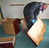 Bed Bug Extermination Cost images