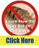 Remedy For Bed Bugs photos
