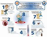 Bed Bug Elimination Pictures