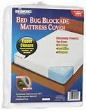 Bed Bug Cover Images